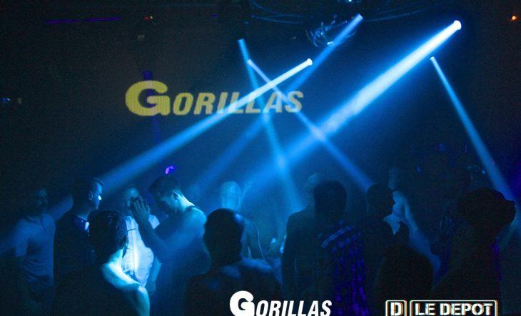 Gorillas Paris #1