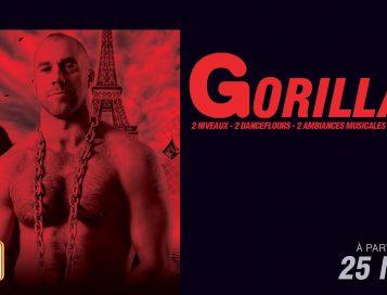 Gorillas Paris #3