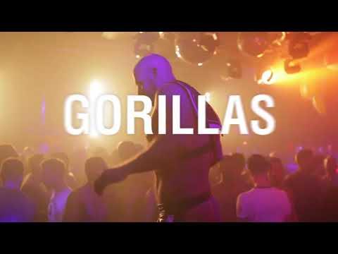 Gorillas Paris 27.01.2018