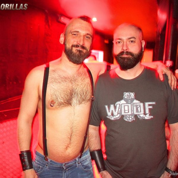 Gorillas Mai 2019